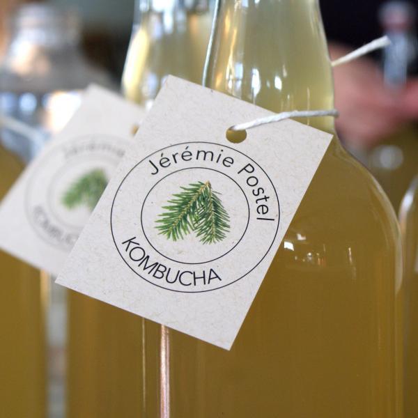 bouteilles-de-kombucha-crop